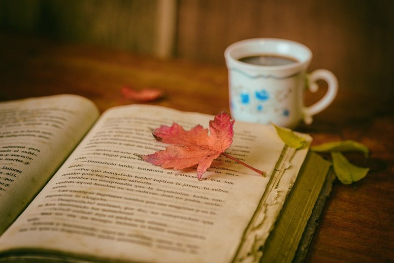 Book and cup  - 8 Social - Distancing - Friendly Activities To Do At Home