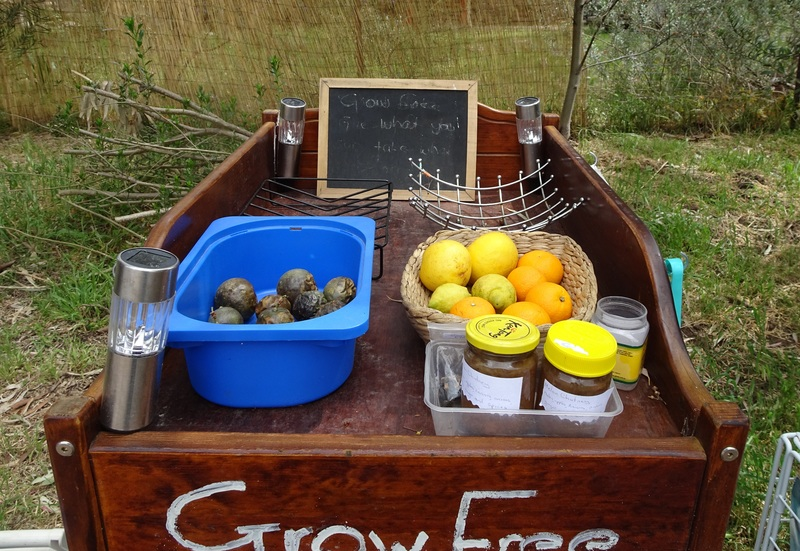Fruit on grow frww cart