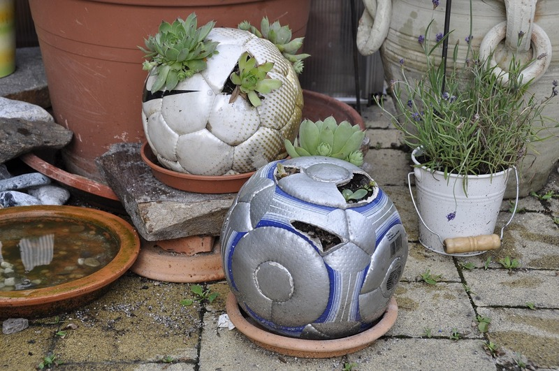 Old sports' balls