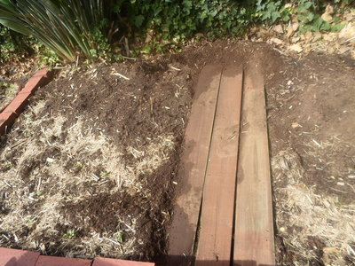 Planks as a path