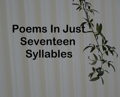 Poems In Just Seventeen Syllables