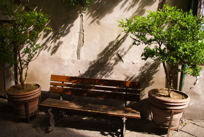 Seat in the shade