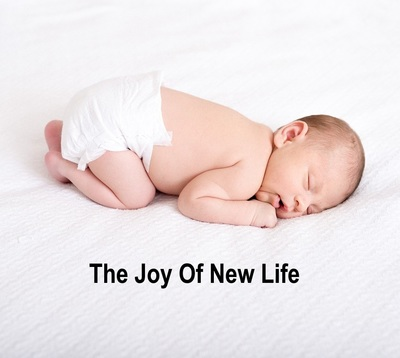 The Joy Of New Life