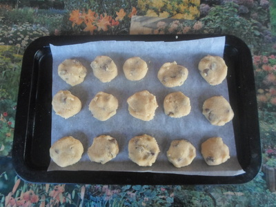 Uncooked cookies on tray