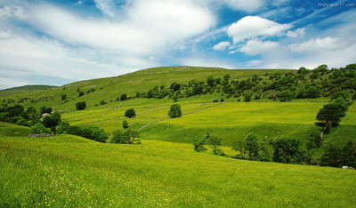 Winter, green hills, country
